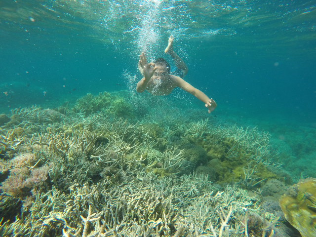 Gili Island Tour