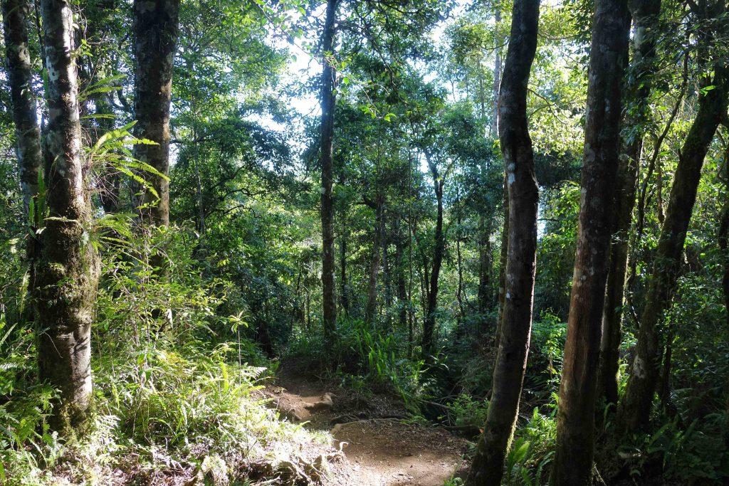 https://www.rinjanisenarutrekking.com/wp-content/uploads/2018/05/Mount-Rinjani-Trekking-on-Galery-24-1024x683.jpg